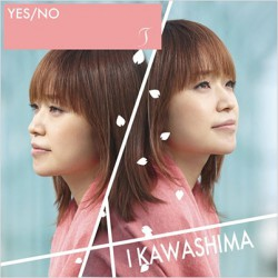 「 YES/NO / T 」